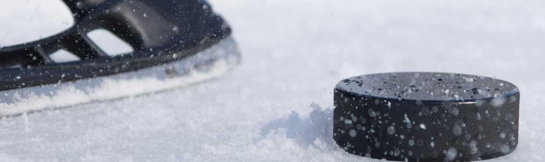 Talviurheilu