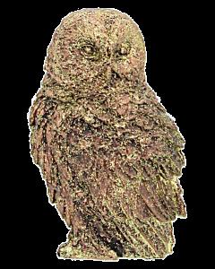 Pöllökoriste