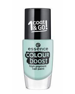 Essence colour boost high pigment nail paint 06