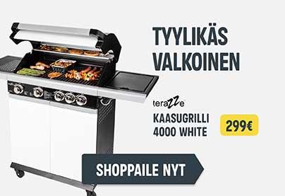 Sekundääri1 - valkoinen grilli